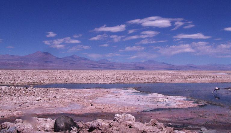 Tours Lacs de l'Altiplano